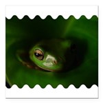 Lazy Frog Square Car Magnet 3
