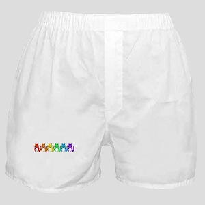 Happy Rainbow Cats Boxer Shorts