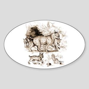 Bobcat Family Sticker (Oval)