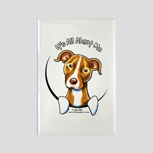 Pit Bull IAAM Rectangle Magnet