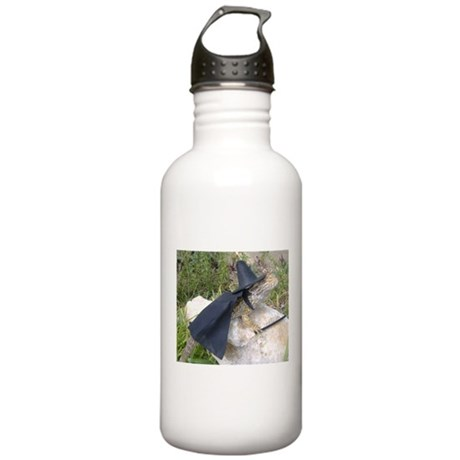 Spiny the Lizard Wizard Stainless Water Bottle 1.0
