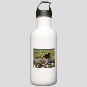 Graduate Spiny the Lizard Stainless Water Bottle 1
