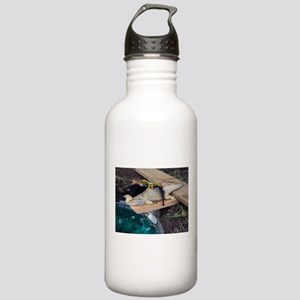 Pirate Spiny the Lizard Stainless Water Bottle 1.0