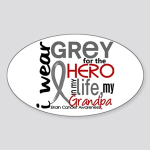 Hero in Life 2 Brain Cancer Sticker (Oval )