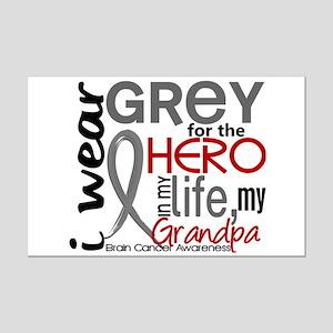 Hero in Life 2 Brain Cancer Mini Poster Print