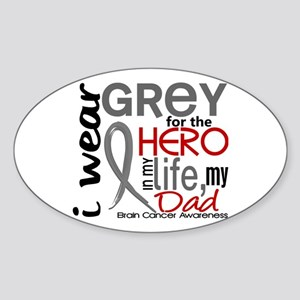 Hero in Life 2 Brain Cancer Sticker (Oval )