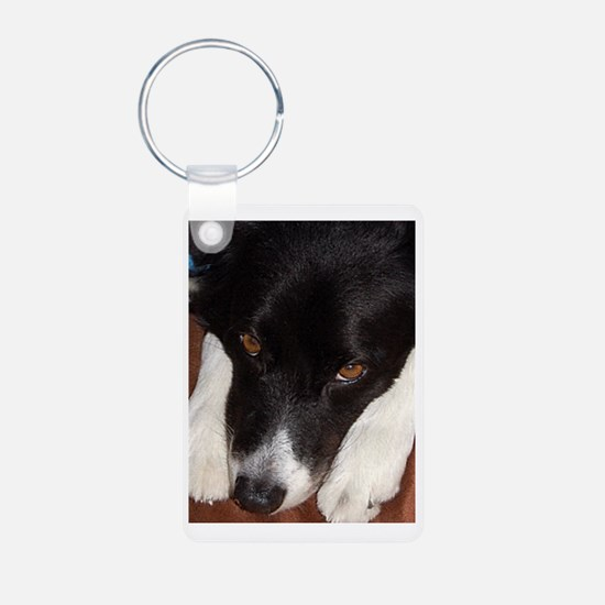 Border Collie Madness Keychains