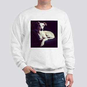 The Whippet Is In Sweatshirt