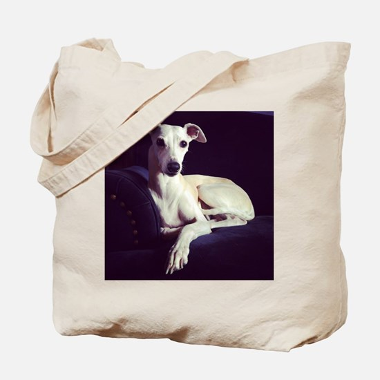 The Whippet Is In Tote Bag