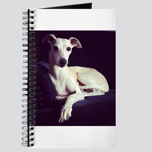 The Whippet Is In Journal