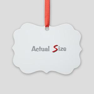 Actual Size Picture Ornament