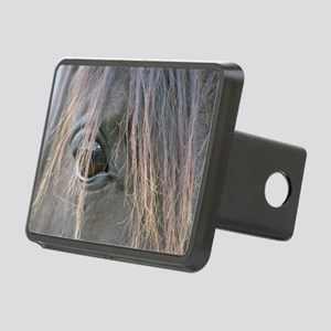 Spiffys eye Rectangular Hitch Cover