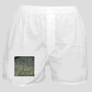 Gustav Klimt Apple Tree Boxer Shorts