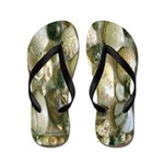 Sea Shell Art Flip Flops