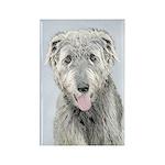 Irish Wolfhound Rectangle Magnet