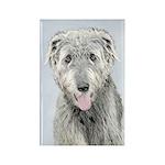 Irish Wolfhound Rectangle Magnet (100 pack)