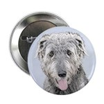 Irish Wolfhound 2.25