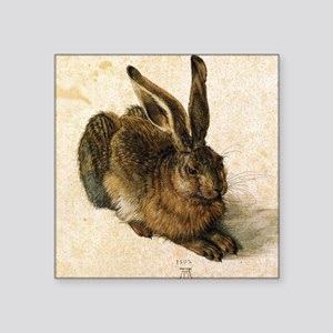 "Albrecht Durer Young Hare Square Sticker 3"" x 3"""