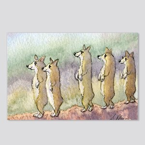 Corgi dogs having a meerkat moment Postcards (Pack