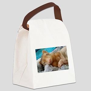 Noodle the Ferret Canvas Lunch Bag