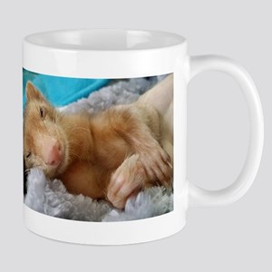 Noodle the Ferret Mugs