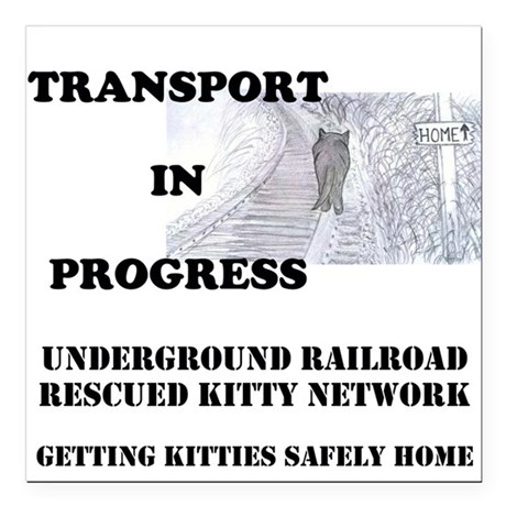 "Transport In Progress Square Car Magnet 3"" x"