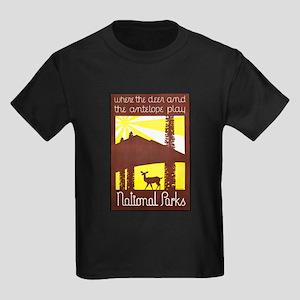 National Parks Travel Poster 3 Kids Dark T-Shirt