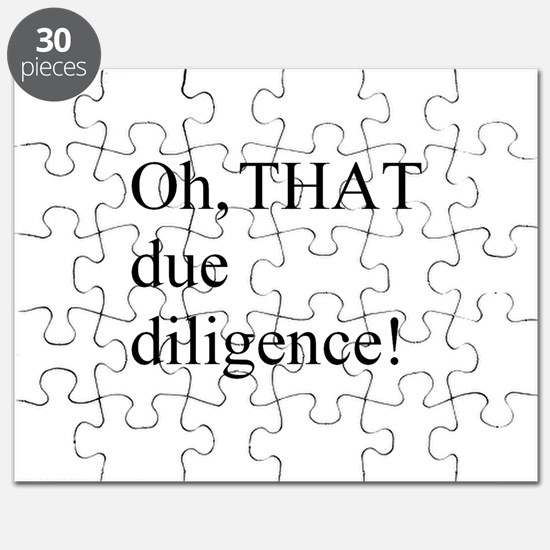 Due Diligence Puzzle