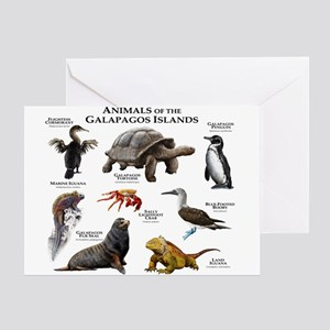 Animals of the Galapagos Islands Greeting Card