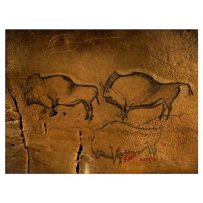 Stone-age cave paintings, Asturias, Spain Poster