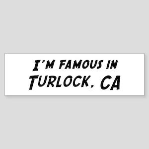 Famous in Turlock Bumper Sticker