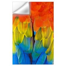 Scarlet macaw plumage Wall Decal