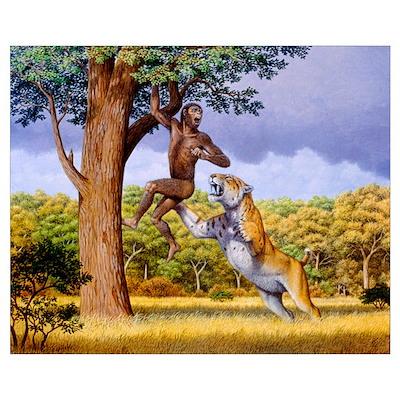 Scimitar cat attacking a hominid Poster