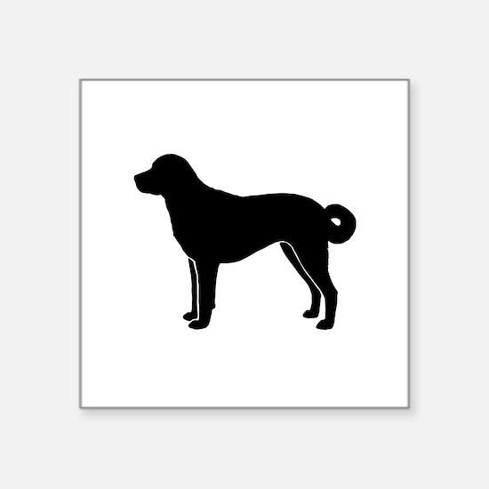 "Anatolian Shepherd Square Sticker 3"" x 3"""
