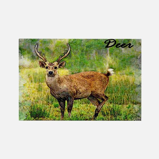 deer in a beautiful setting Rectangle Magnet (10 p