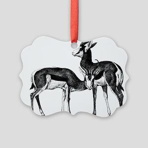 Springboks Picture Ornament