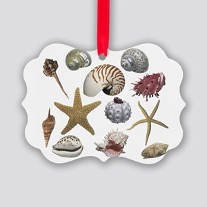 Shells Picture Ornament