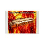 lava Rectangle Magnet (10 pack)