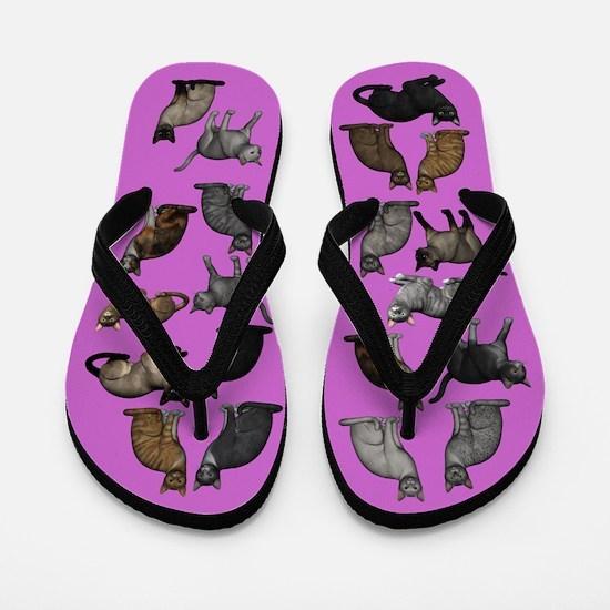 Cats On Purple Flip Flops