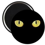 Amber Cat Eyes Magnet