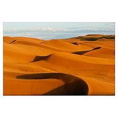 Desert sand dunes at Glamis,near Yuma,California Poster