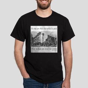Aurelius on History T-Shirt