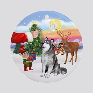 Treat for an Alaskan Malamute Ornament (Round)