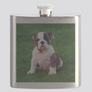 Cute Bulldog Flask
