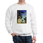 Wish Upon a Star Sweatshirt