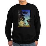 Wish Upon a Star Sweatshirt (dark)
