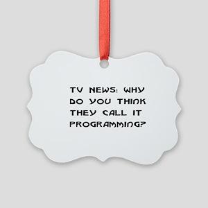 programming01 Picture Ornament