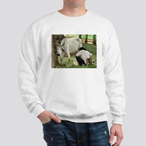 Campesino Colombiano Sweatshirt