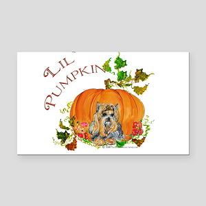 Sept 2008 Lil pumpkin Rectangle Car Magnet