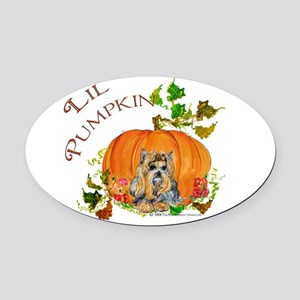Sept 2008 Lil pumpkin Oval Car Magnet